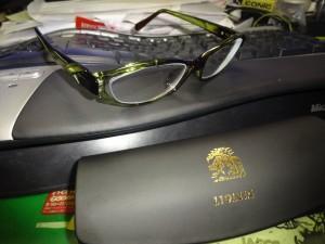 リオレイアモデルのメガネ